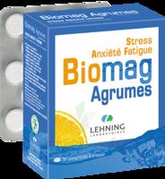 Lehning Biomag Comprimés à Croquer Agrumes B/90 à PÉLISSANNE