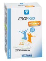 Ergykid Vitamin' Poudre Solution Buvable 14 Sachets à PÉLISSANNE
