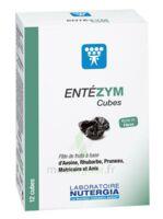 Entezym Cube à Mâcher équilibre Flore Intestinale B/12 à PÉLISSANNE