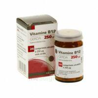 Vitamine B12 Gerda 250 Microgrammes, Comprimé Sécable à PÉLISSANNE