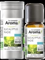 Huile Essentielle Bio Eucalyptus Radié