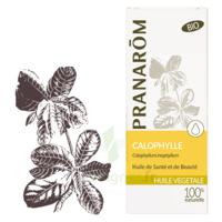 Pranarom Huile Végétale Bio Calophylle 50ml à PÉLISSANNE