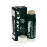 Dermophil Indien Pom Stick Girex/30g à PÉLISSANNE