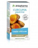 Arkogelules Curcuma Pipérine Gélules Fl/45 à PÉLISSANNE
