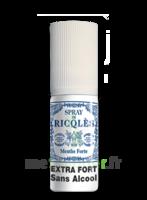 Ricqles Spray buccal sans alcool menthe 15ml à PÉLISSANNE