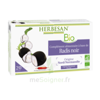 Herbesan Phyto Radis Noir Solution Buvable 20 Ampoules/15ml à PÉLISSANNE