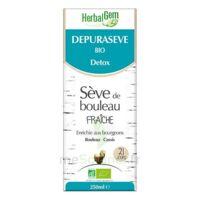 Herbalgem - Dépurasève Bio 250ml à PÉLISSANNE