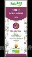 Herbalgem Sirop Bio Des Fumeurs 150ml à PÉLISSANNE