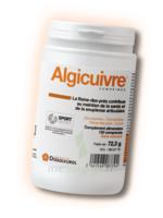 Dissolvurol Algicuivre Comprimés B/120 à PÉLISSANNE