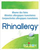 Boiron Rhinallergy Comprimés B/40 à PÉLISSANNE