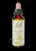 Fleurs De Bach® Original Wild Rose - 20 Ml à PÉLISSANNE