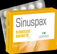 Lehning Sinuspax Comprimés à Croquer 3plq/20 à PÉLISSANNE