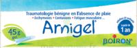 Boiron Arnigel Gel T/45g à PÉLISSANNE